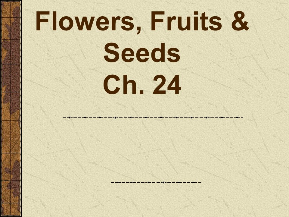 Flowers, Fruits & Seeds Ch. 24