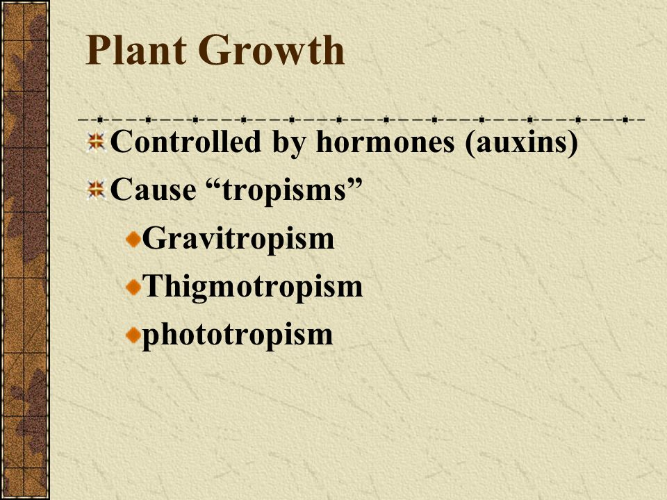 Plant Growth Controlled by hormones (auxins) Cause tropisms