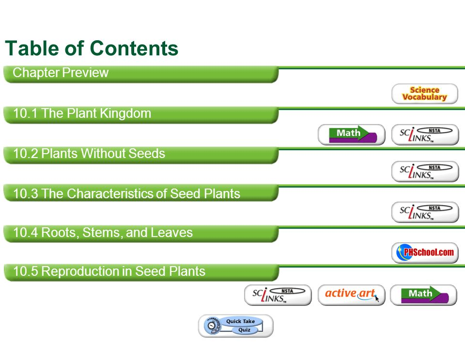 Table of Contents Chapter Preview 10.1 The Plant Kingdom - ppt ...