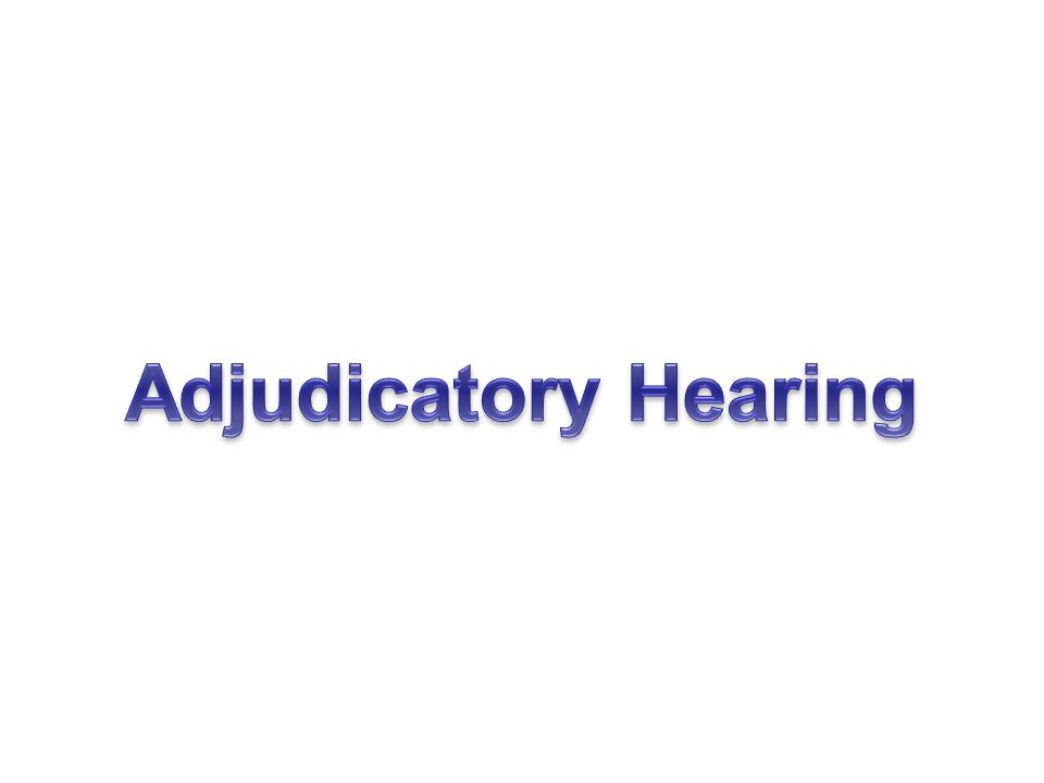 Adjudicatory Hearing