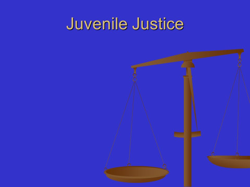 juvenile justice system should they be Whether the juvenile has had enough prior contact with the juvenile court system to warrant a serious response, such as probation, or the filing of a petition with the juvenile court whether the juvenile needs to be temporarily detained in a juvenile justice center.
