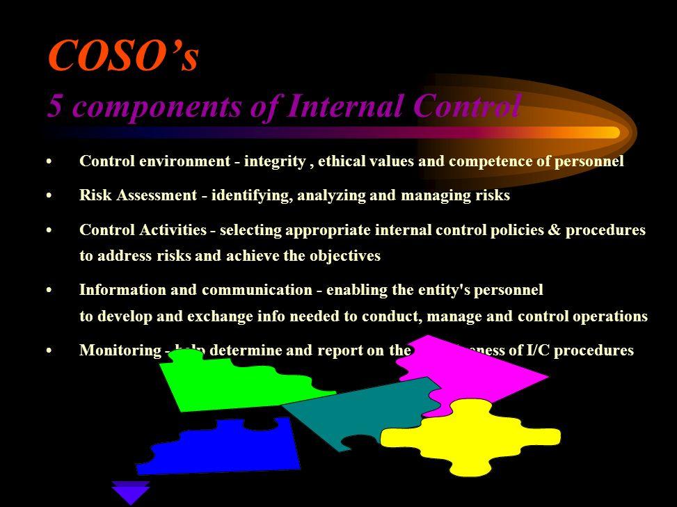 components of internal control pdf