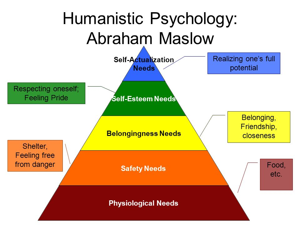 abraham maslows motivation and personality theory Learn more about maslow's hierarchy of needs theory to understand the stages  of growth in  according to abraham maslow people are always motivated to  satisfy their needs both at home and at work  motivation and personality (vol 2 .