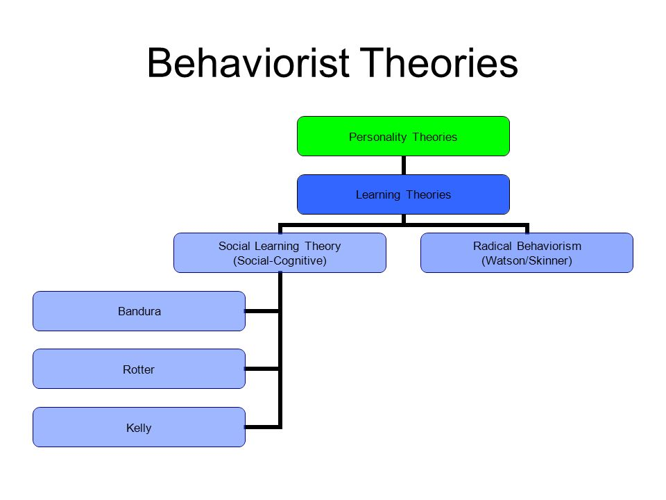 behaviourist theory