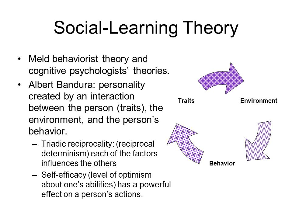 behaviorism or black box psychology essay Radical behaviorism is a philosophy that underlies the experimental it is true to some extent that skinner's psychology considers humans a black box  papers.