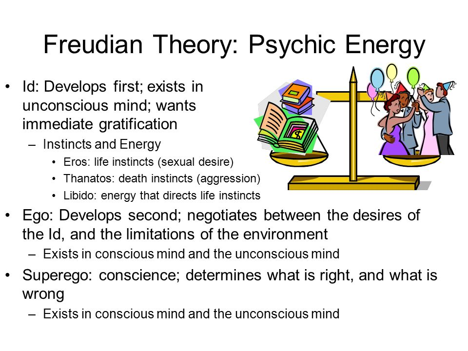 an analysis of the feuds theory of mind and instincts The freud's theory of psychosexual development centered on the a sense of instincts that are known best human mind works and the theory that.