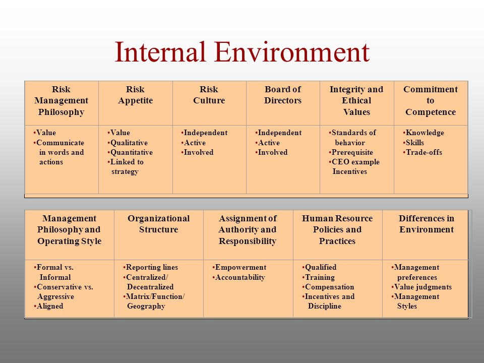 Internal Environment Risk Management Philosophy Risk Appetite on Human Geography Of The Discipline