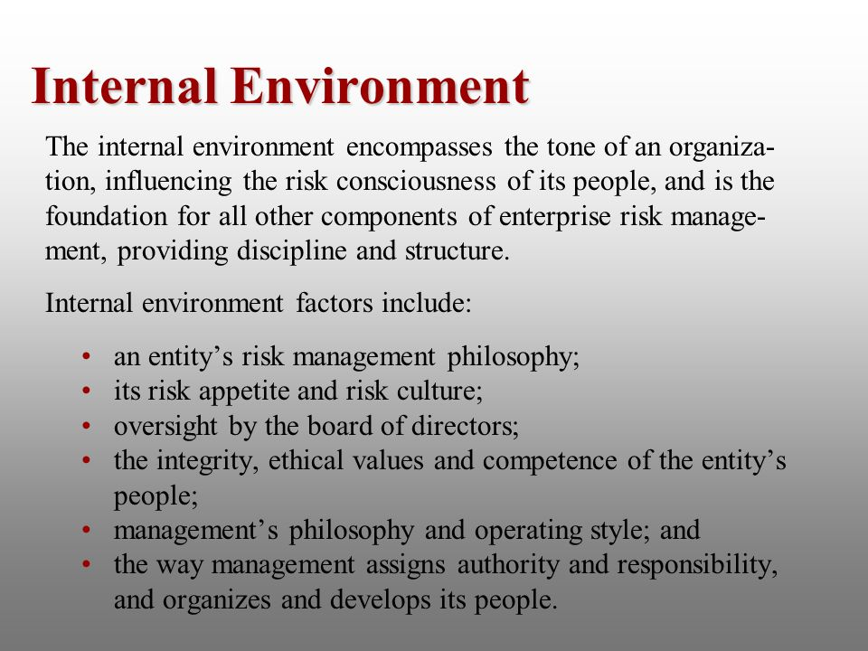 the internal and external factors that influence the operational objectives of toyota The influence of performance objectives of the implementation of lean manufacturing practices:  internal and external processes,.