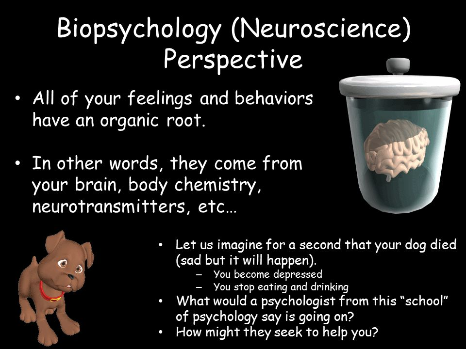 Psychology What Is It Simply Put It Is The Study Of