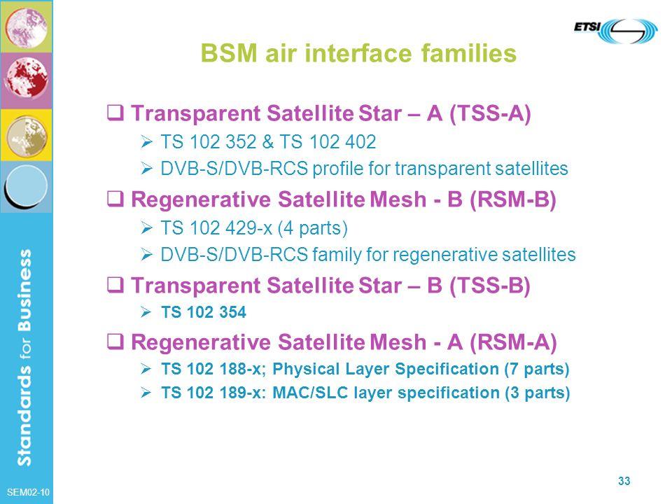 BSM air interface families