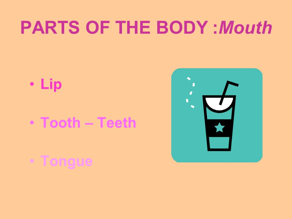 PARTS OF THE BODY :Mouth