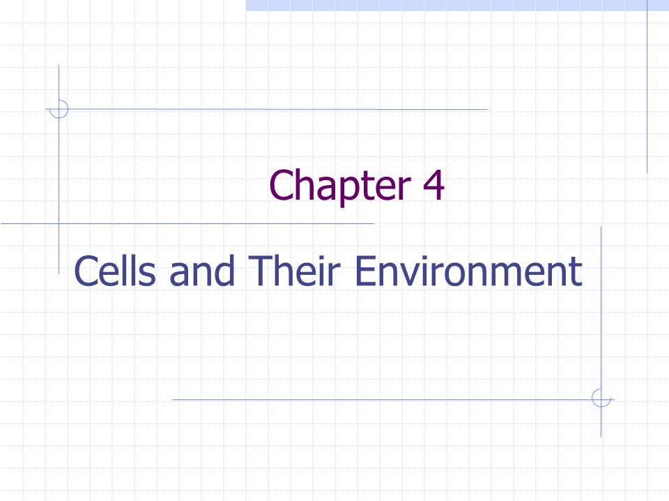Cells and Their Environment - ppt download