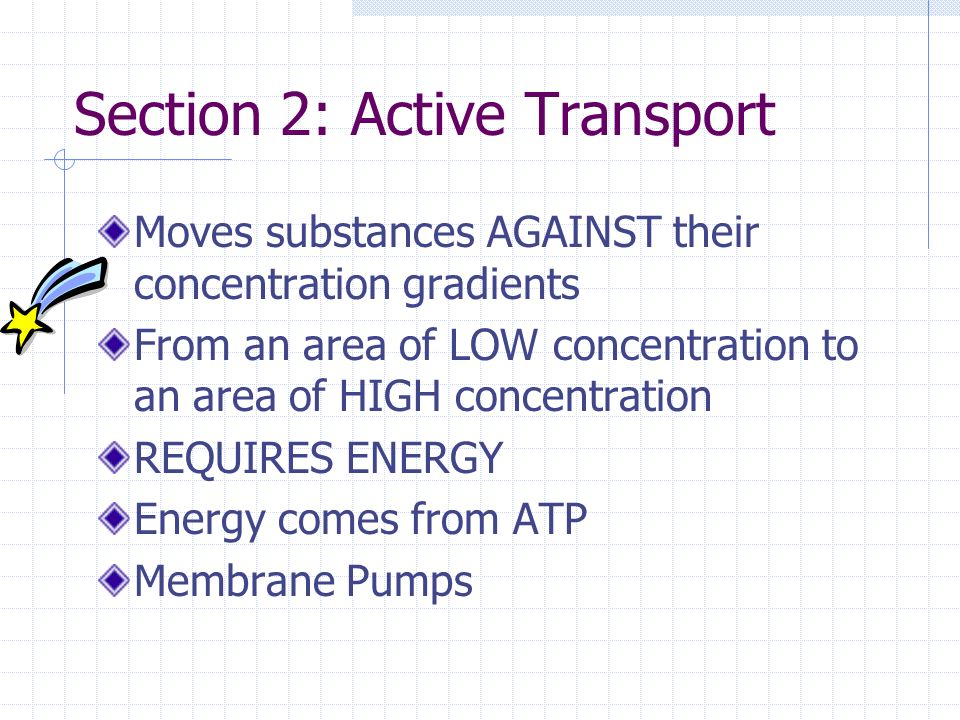 Section 2: Active Transport