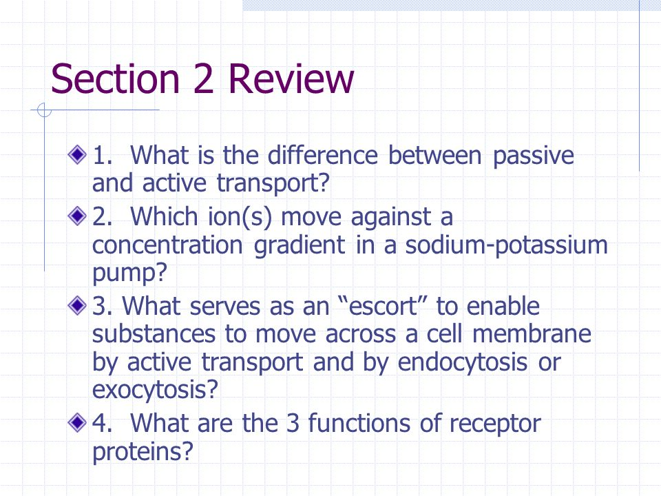Section 2 Review 1. What is the difference between passive and active transport