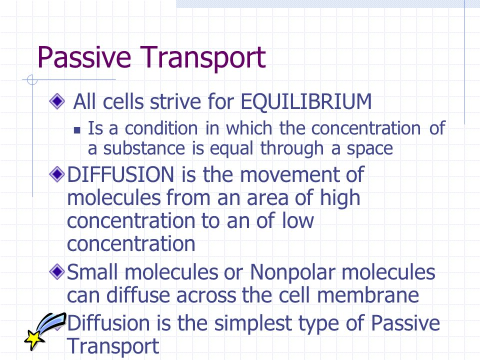 Passive Transport All cells strive for EQUILIBRIUM