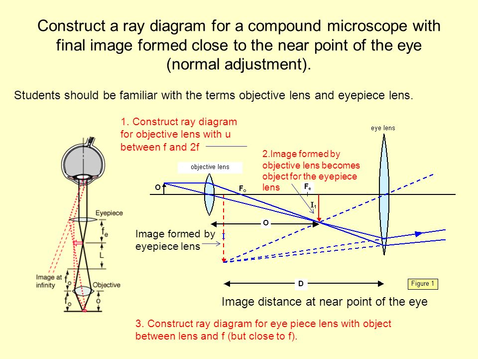 Option g electromagnetic waves ppt video online download construct a ray diagram for a compound microscope with final image formed close to the near ccuart Gallery