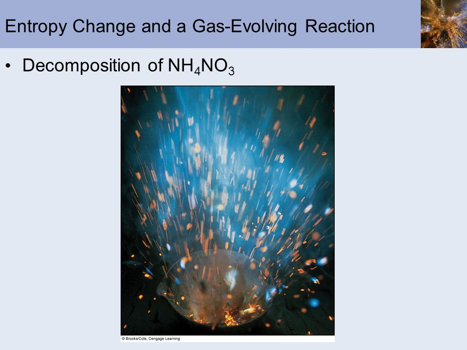 Entropy Change and a Gas-Evolving Reaction