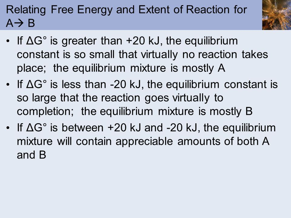 Relating Free Energy and Extent of Reaction for A B