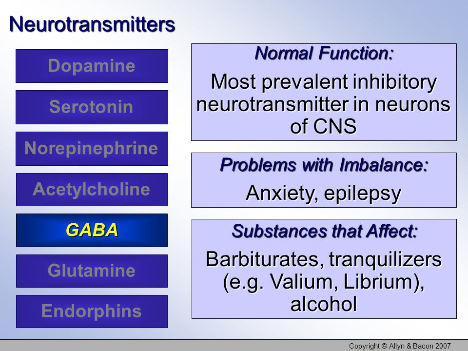 Most prevalent inhibitory neurotransmitter in neurons of CNS
