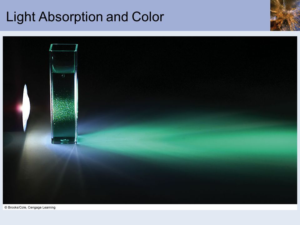 Light Absorption and Color