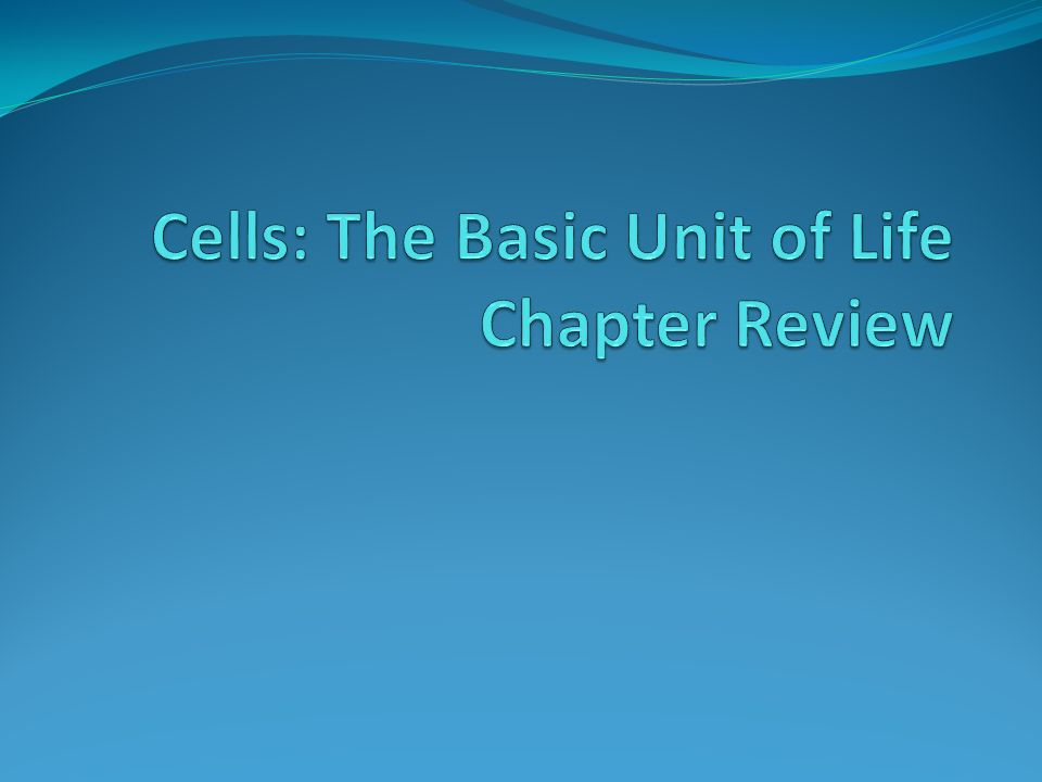 Cells: The Basic Unit of Life Chapter Review