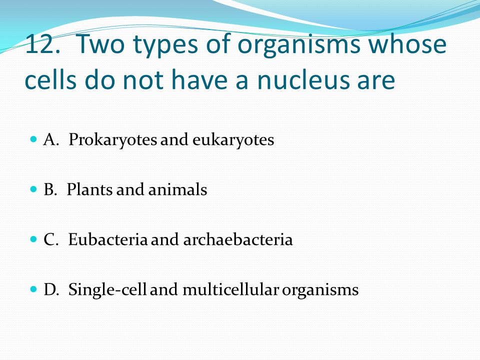 12. Two types of organisms whose cells do not have a nucleus are