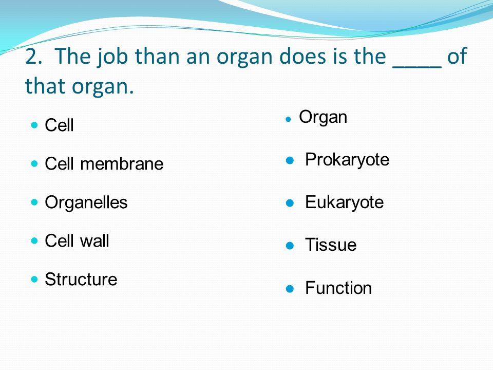 2. The job than an organ does is the ____ of that organ.