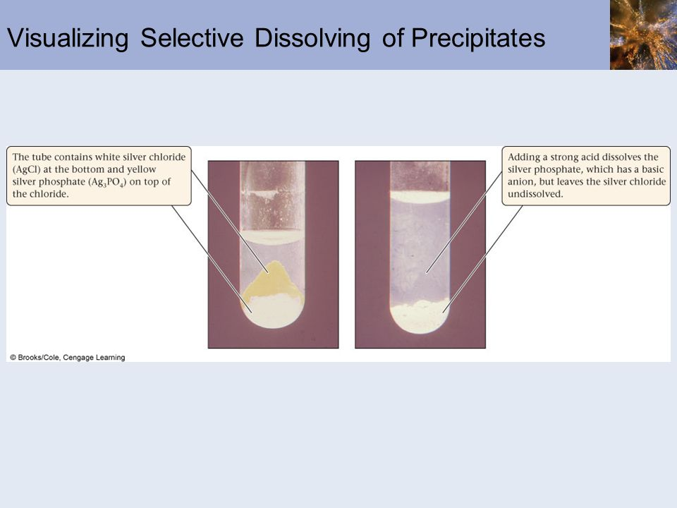 Visualizing Selective Dissolving of Precipitates