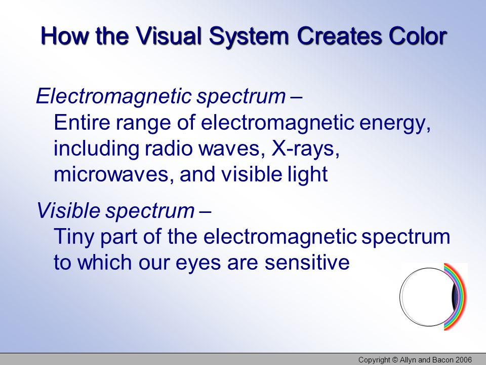 How the Visual System Creates Color