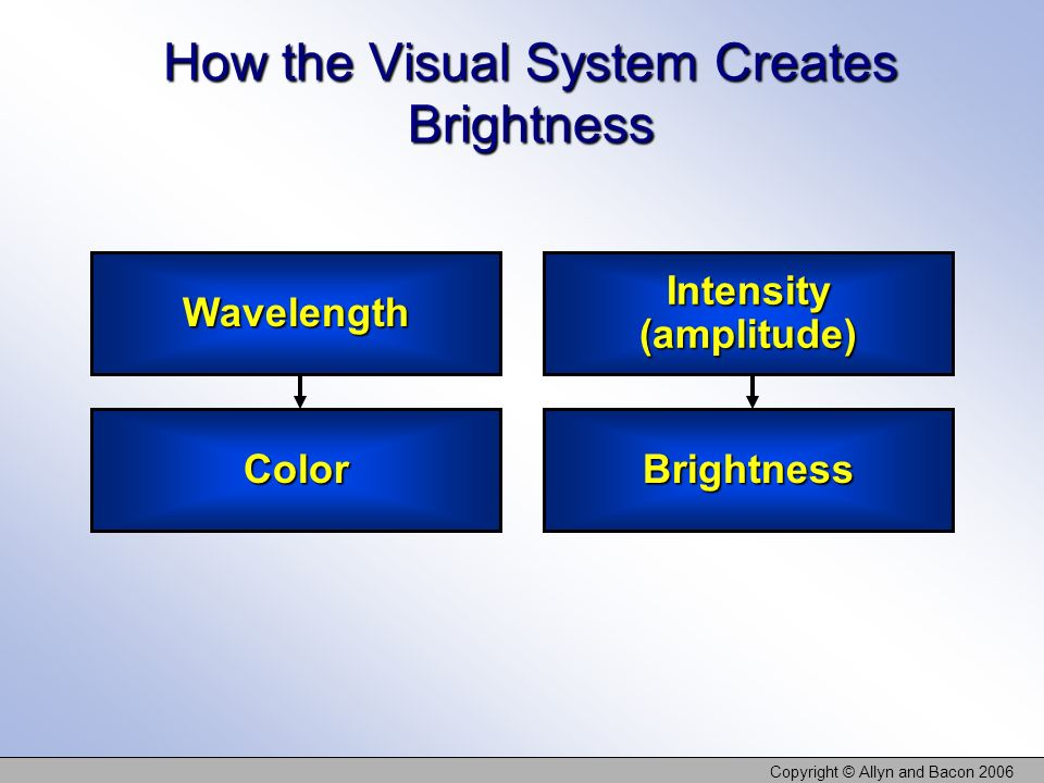 How the Visual System Creates Brightness