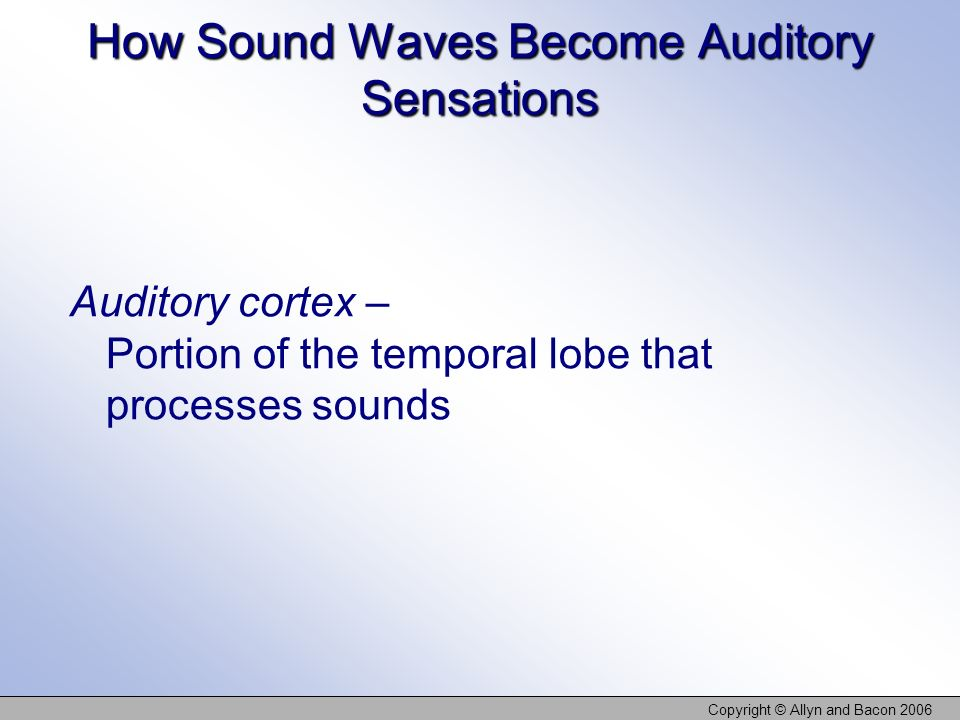How Sound Waves Become Auditory Sensations