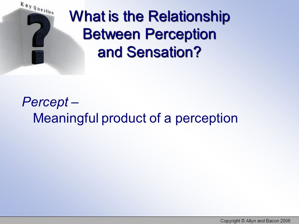 What is the Relationship Between Perception and Sensation