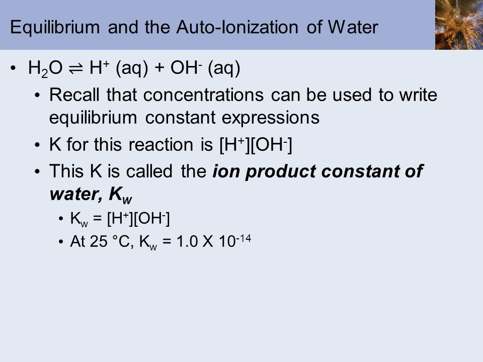 Equilibrium and the Auto-Ionization of Water