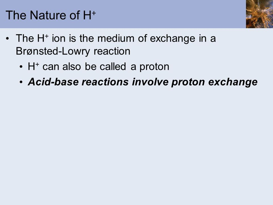 The Nature of H+ The H+ ion is the medium of exchange in a Brønsted-Lowry reaction. H+ can also be called a proton.