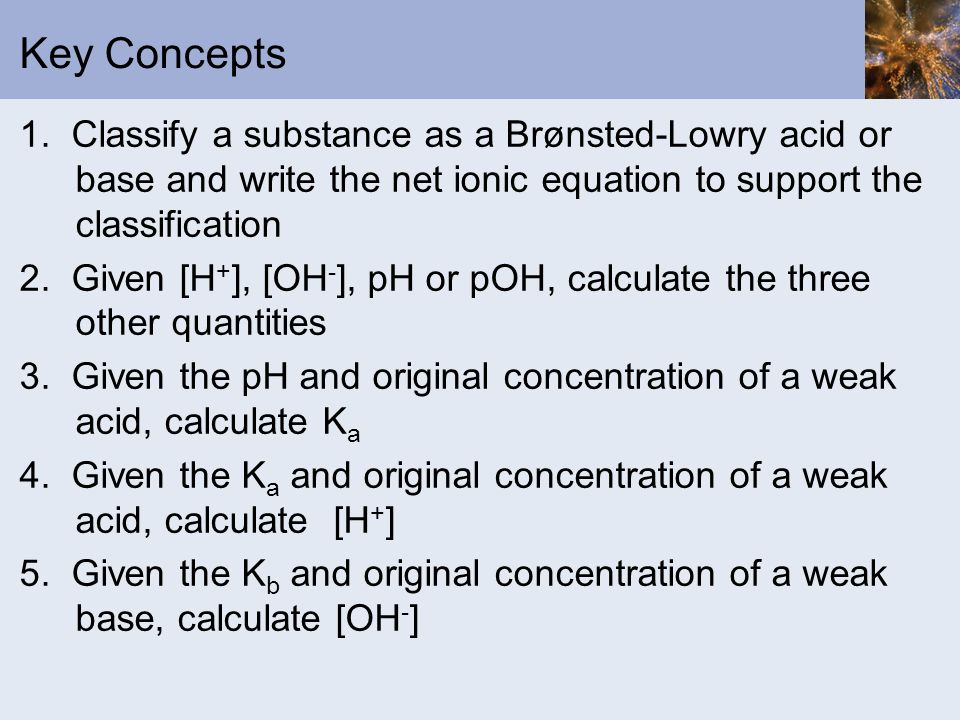 Key Concepts 1. Classify a substance as a Brønsted-Lowry acid or base and write the net ionic equation to support the classification.