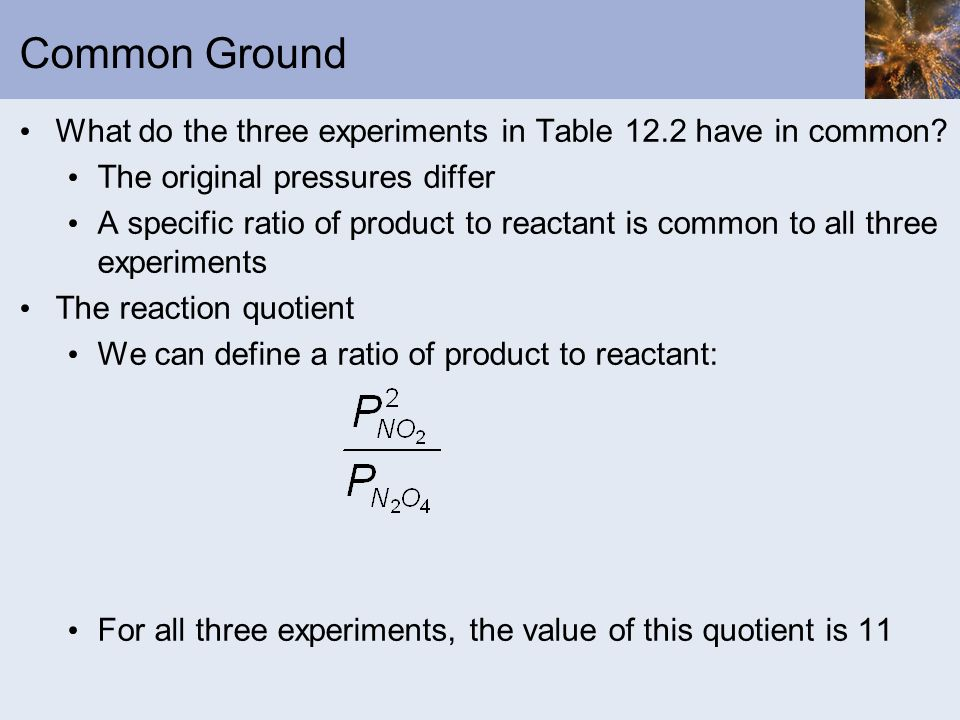 Common Ground What do the three experiments in Table 12.2 have in common The original pressures differ.