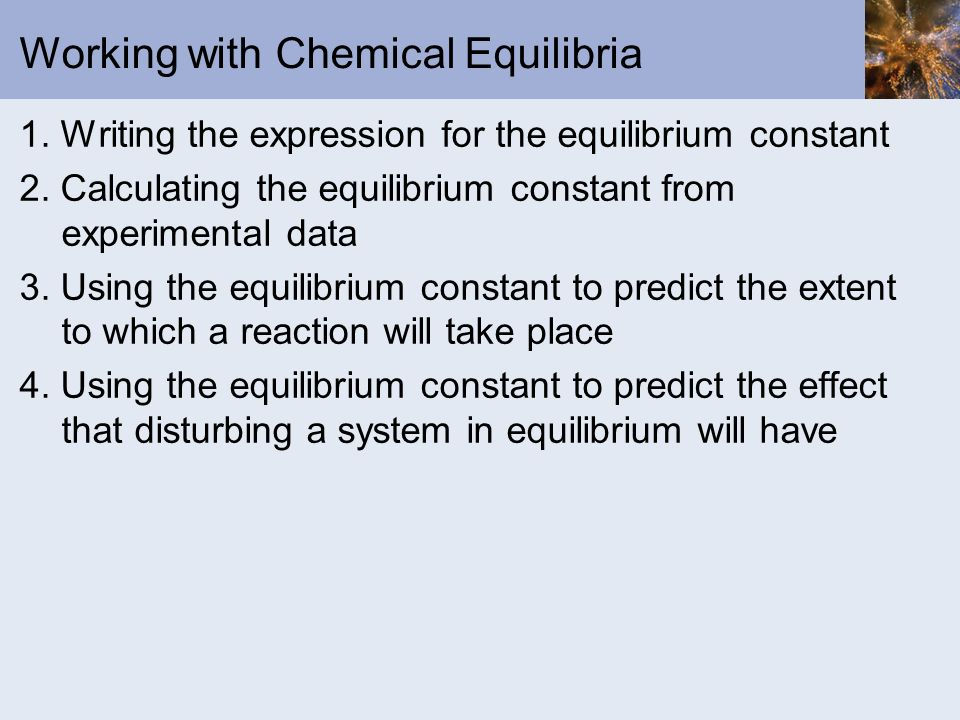 Working with Chemical Equilibria