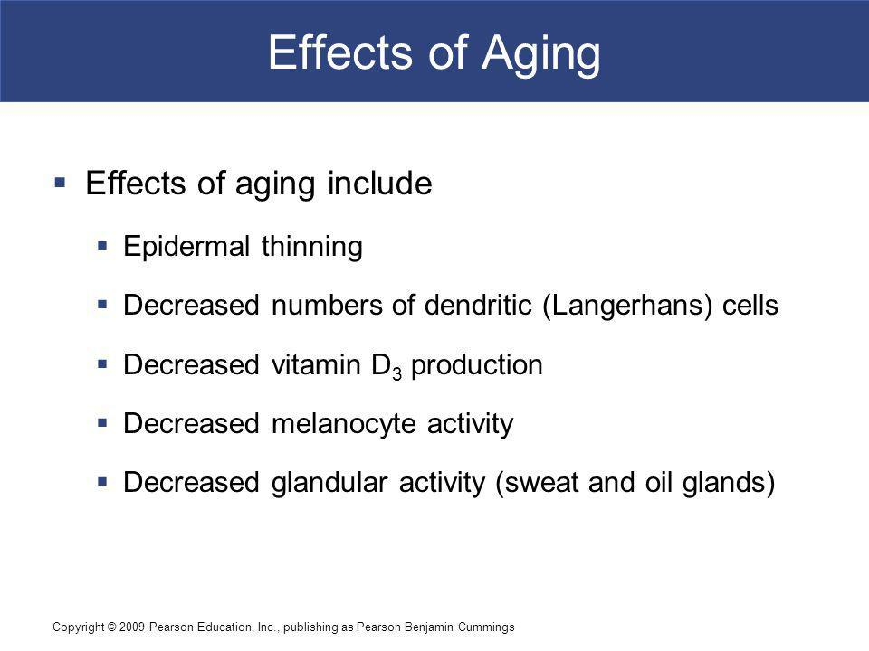 Effects of Aging Effects of aging include Epidermal thinning