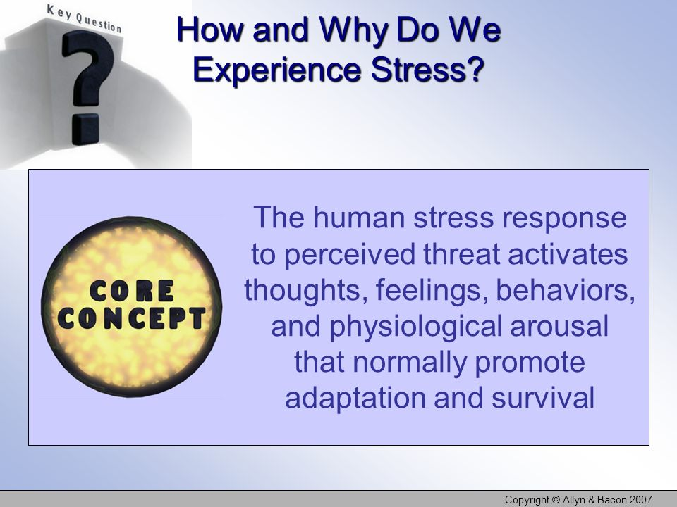 How and Why Do We Experience Stress