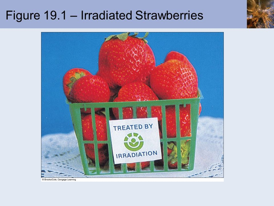 Figure 19.1 – Irradiated Strawberries