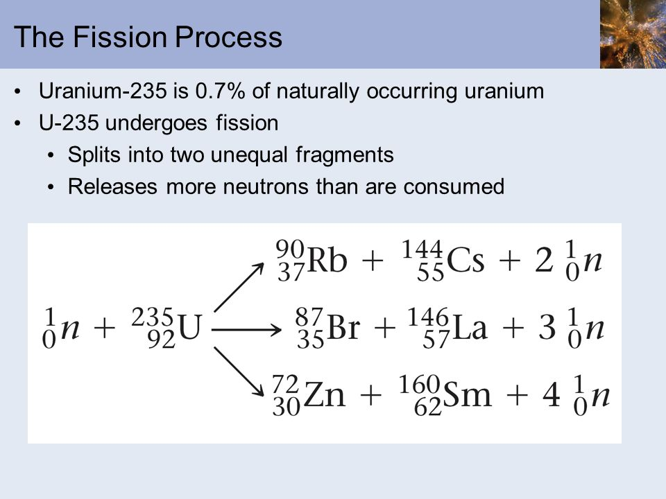 The Fission Process Uranium-235 is 0.7% of naturally occurring uranium
