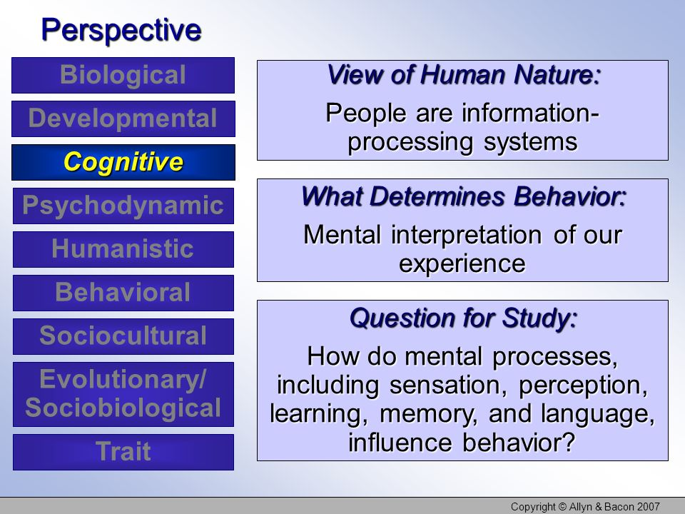 Cognitive Behavioral View Of Human Nature