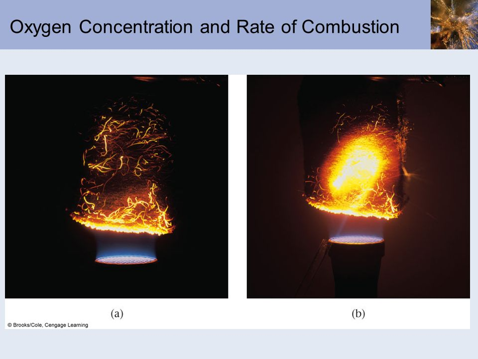 Oxygen Concentration and Rate of Combustion