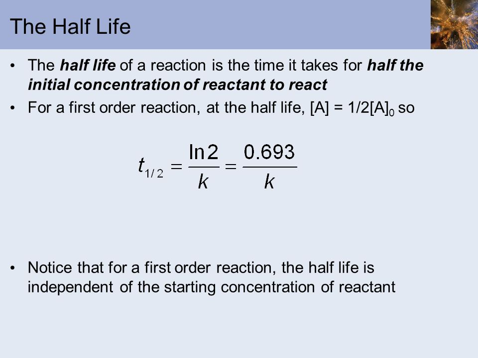 The Half Life The half life of a reaction is the time it takes for half the initial concentration of reactant to react.