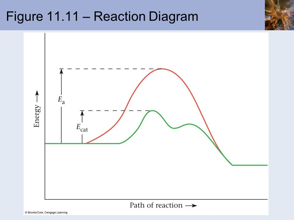Figure 11.11 – Reaction Diagram