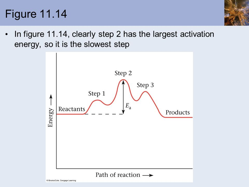Figure In figure 11.14, clearly step 2 has the largest activation energy, so it is the slowest step.