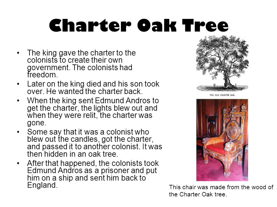 Charter Oak Tree The king gave the charter to the colonists to create their own government. The colonists had freedom.