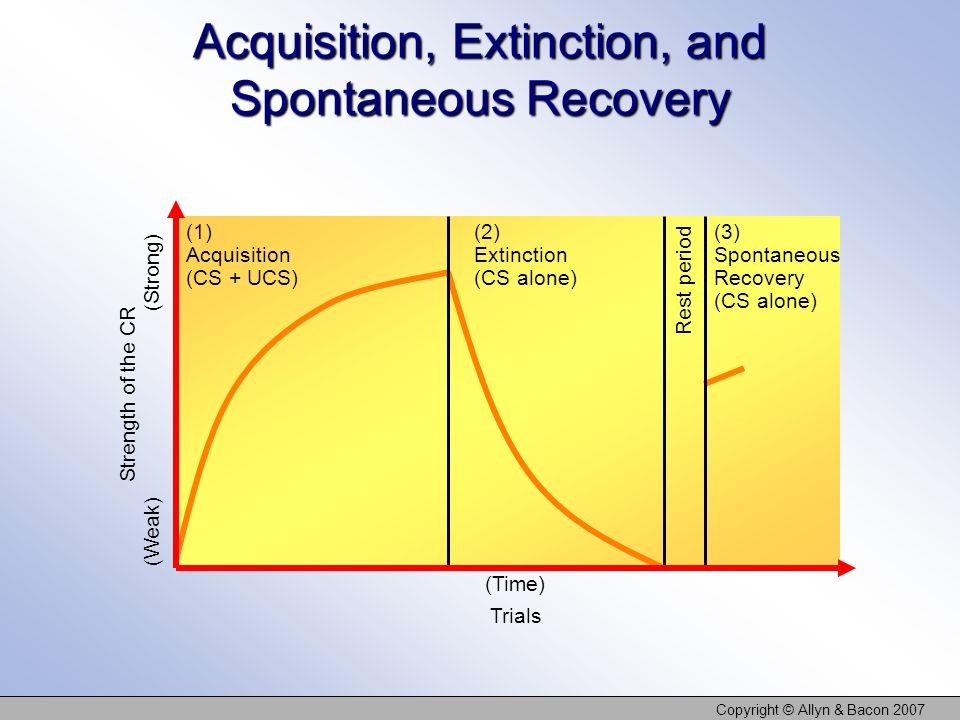 Acquisition, Extinction, and Spontaneous Recovery