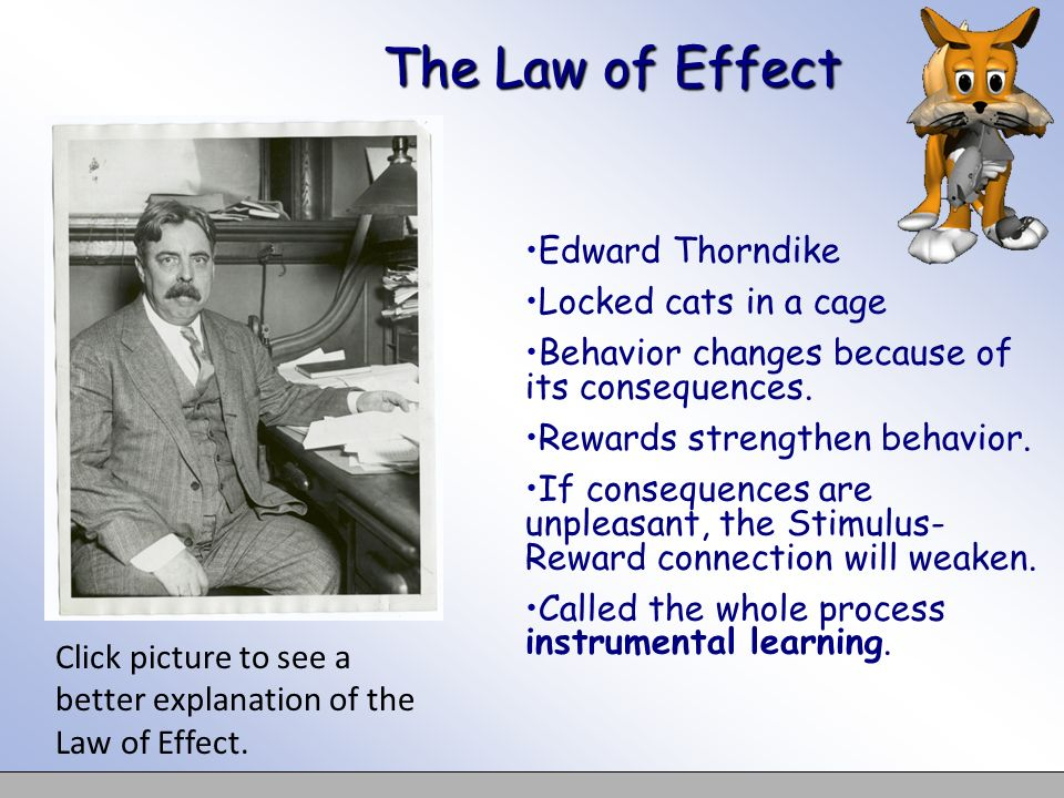 The Law of Effect Edward Thorndike Locked cats in a cage