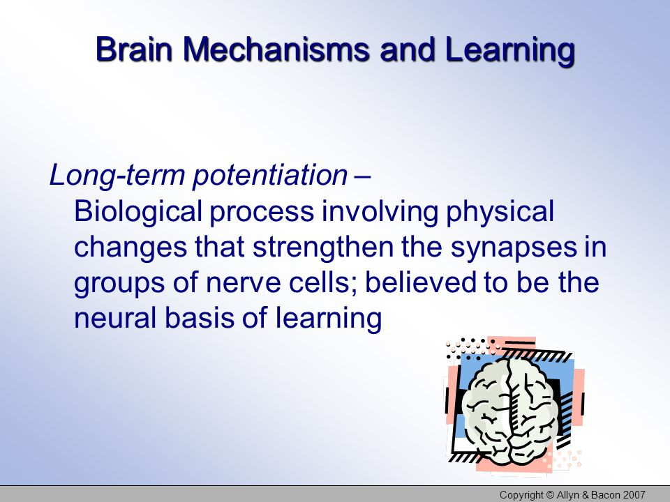Brain Mechanisms and Learning